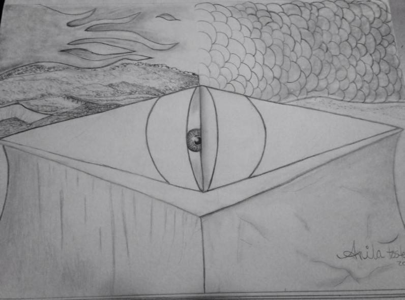 fish eye abstract